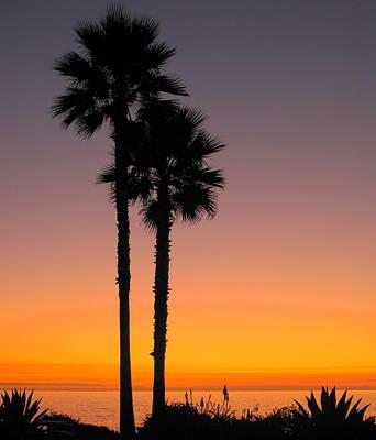Laguna Beach Photograph - Palm Pair by Linda Larson