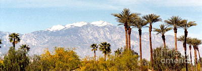 Photograph - Palm Springs View by Barbara Plattenburg