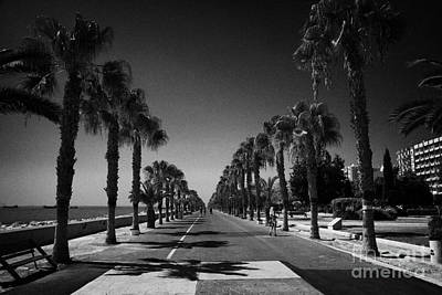 palm tree lined seafront promenade in twin cities park on reclaimed land Limassol lemesos Art Print by Joe Fox