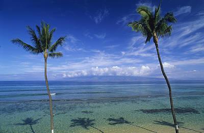 Kaanapali Beach Photograph - Palm Tree Shadows At Kaanapali Beach by Rich Reid