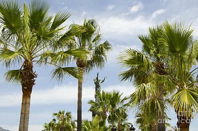 Palm Trees In Spain Art Print by Perry Van Munster