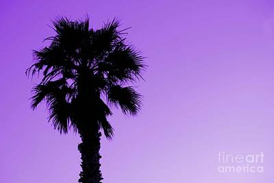 Art Print featuring the photograph Palm With Violet Sky by Kim Pascu