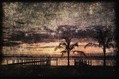Palms And Docks Art Print by Skip Nall