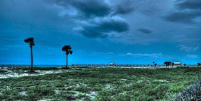 Digital Art - Palms And The Gulf Shore Pier by Michael Thomas