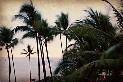 Photograph - Palms In The Breeze by Paulette B Wright