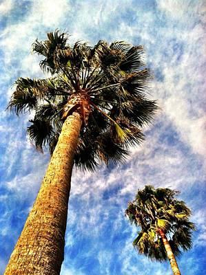 Photograph - Palms by Raven Janush