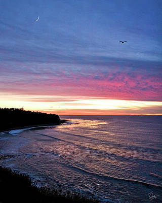 Photograph - Palos Verdes Sunset by Endre Balogh