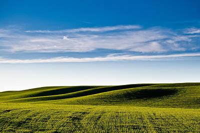 Photograph - Palouse Hills 4 by Niels Nielsen