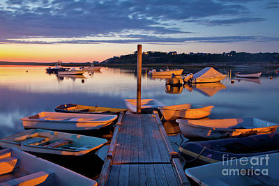 Photograph - Pamet Harbor by Susan Cole Kelly