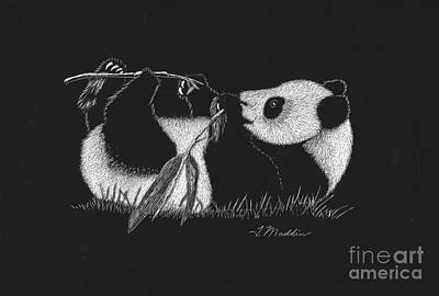 Drawing - Panda Laying by Terri Maddin-Miller