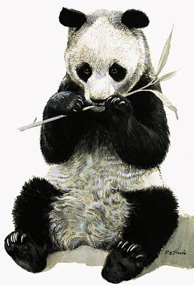 Eating Painting - Panda by R B Davis
