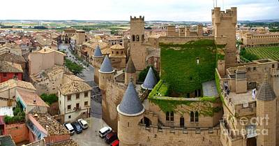 Photograph - Panorama With Castle by Alfredo Rodriguez