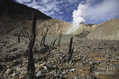 Door Locks And Handles - Papandayan Crater, Java Island by Martin Rietze