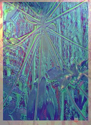 Papaya Madness Art Print by Charles Hansen