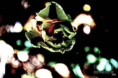 Photograph - Paper Mache' Tulip by Diane montana Jansson