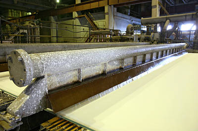 Paper Pulp Photograph - Paper Mill Machinery by Ria Novosti