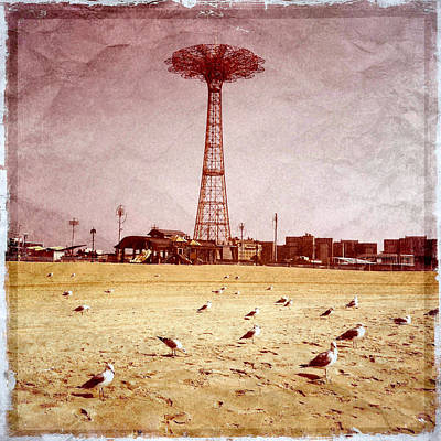 Photograph - Parachute Jump With Seagulls by Frank Winters
