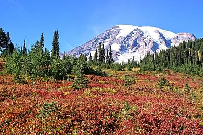 Paradise In Fall On Mt. Rainier  Art Print
