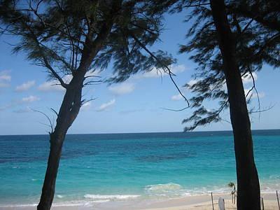 Photograph - Paradise Island Breeze by Melissa Partridge