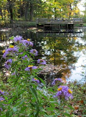 Photograph - Paradise Springs Flowers 2 by Anita Burgermeister