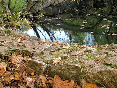 Photograph - Paradise Springs Stone Wall by Anita Burgermeister