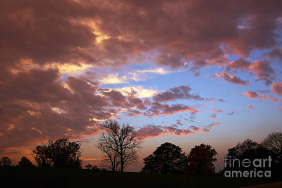Park At Sunset Art Print by Susan Isakson