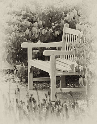 Photograph - Park Bench by Bill Barber