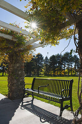 Cement Walkway Photograph - Park Bench Under An Arbor by Thom Gourley/Flatbread Images, LLC