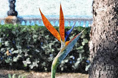 Park Flower Art Print by Slavi Begov