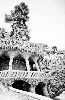 Photograph - Park Guell Twists by Lenny Carter
