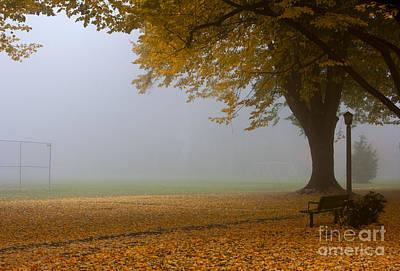 Park In Autumn Art Print by David Buffington