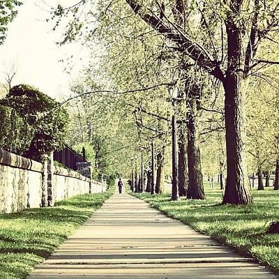 Angle Photograph - #park #sidewalk #nature #tree #sun by Jenna Luehrsen