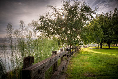 Photograph - Park Sunrise by Connie Cooper-Edwards