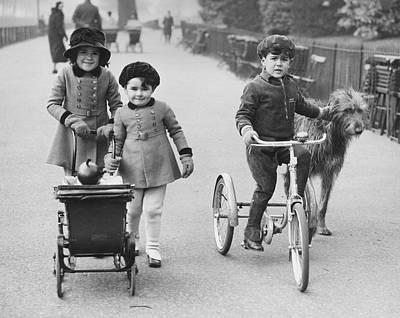 Irish Wolfhound Photograph - Park Walk by Harry Todd