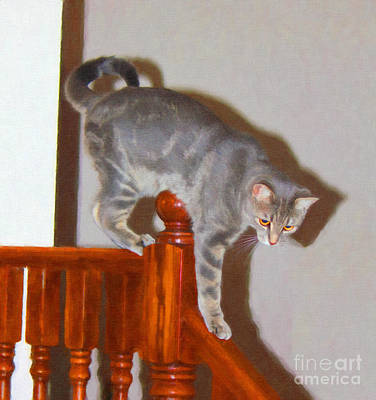 Digital Art - Parkour Cat by Donna L Munro