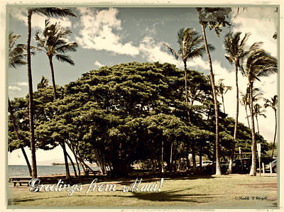 Photograph - Parkside Postcard by Paulette B Wright