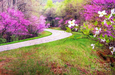 Parkway Kind Of Spring Art Print by Darren Fisher