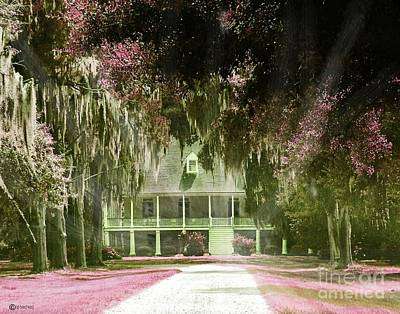 Digital Art - Parlange Plantation Circa 1750 New Roads La by Lizi Beard-Ward