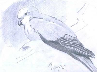 Parrot Print by Poornima M