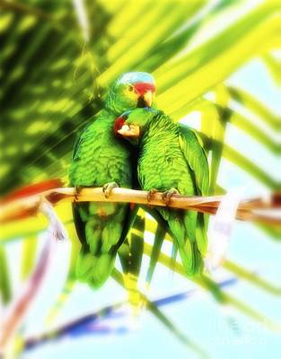 Parrot Digital Art - Parrotheads by Gus McCrea