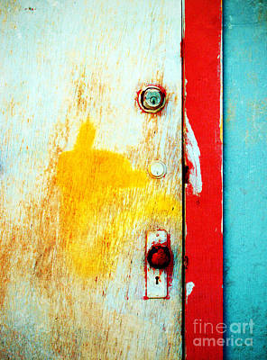 Photograph - Part Of The Door by Tara Turner