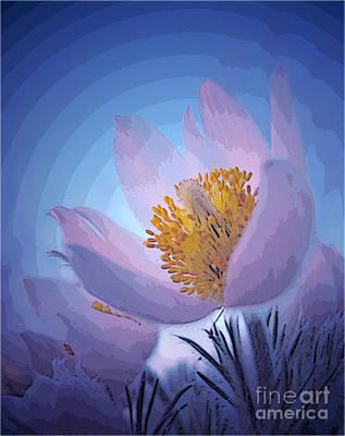 Pasque Flower Art Print by Vivian Christopher