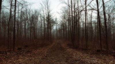 Photograph - Passage Of Desolation by Anthony Rego