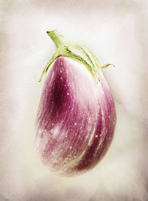 Photograph - Pastel Eggplant by Marilyn Hunt