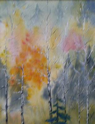 Photograph - Pastel Forest by Ted Kitchen