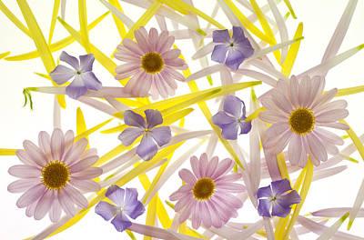 Pastel Strokes Original by Brad Rickerby