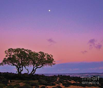 Photograph - Pastel Sunset by Michele Penner