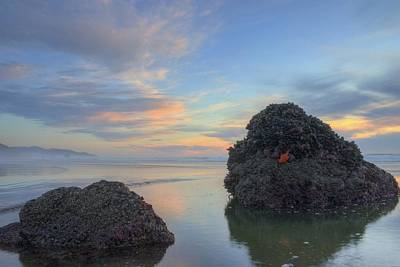 Photograph - Pastel Tidepool by Joseph Bowman