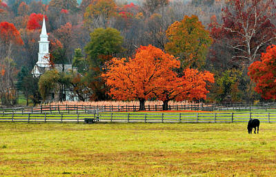 Photograph - Pastoral Autumn by Kristin Elmquist