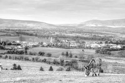 Photograph - Pastoral Evening 2 by Joseph Doyle